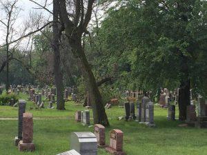 Tumbas del cementerio de Waldheim quedan sepultadas por la lluvia